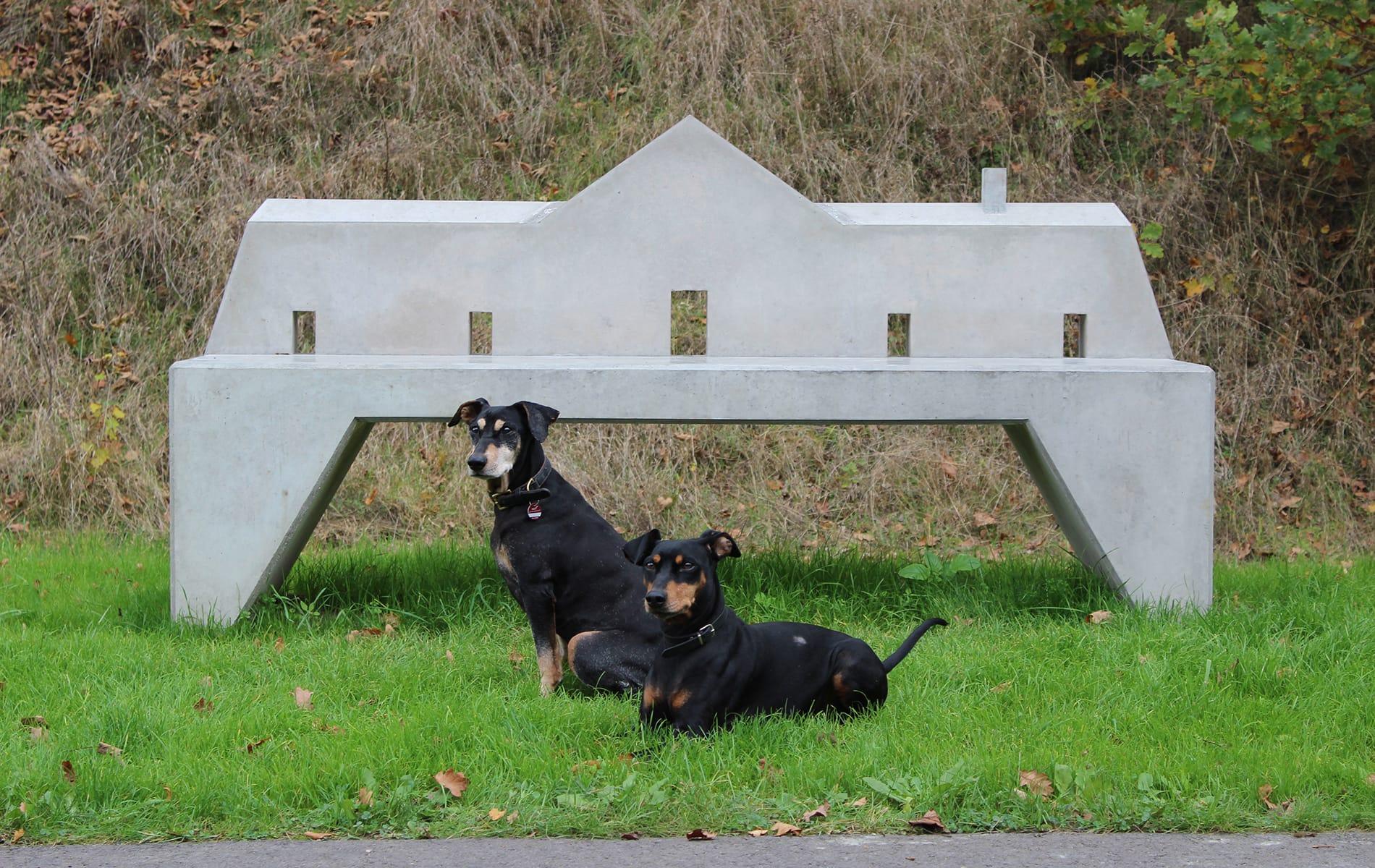 Kunsttour Betzin-Brunne - Die Kunstbank zum ausruhen und zwei Hunde sitzen davor