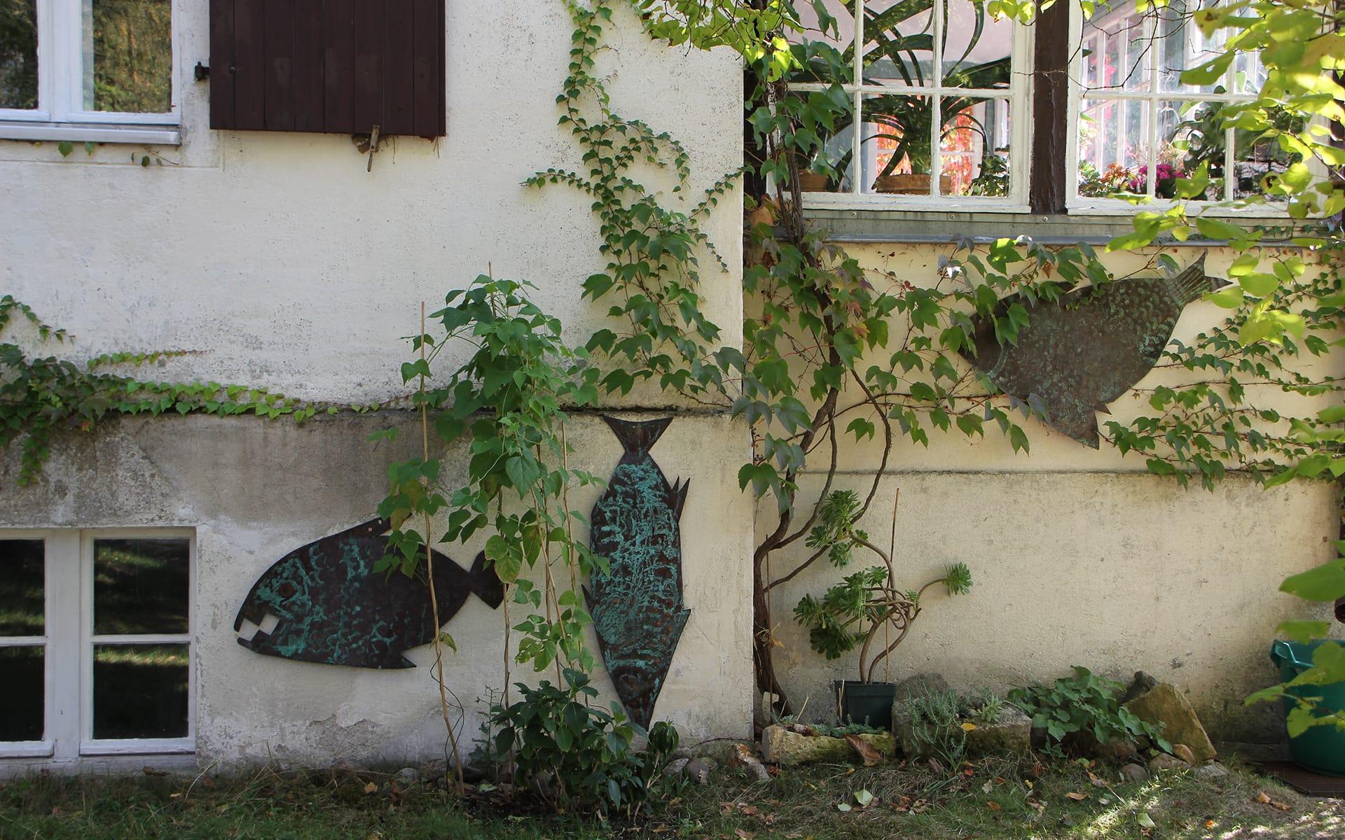 Kunsttour Stechlin - Fisch Skulpturen an der Wand im Künstlergarten